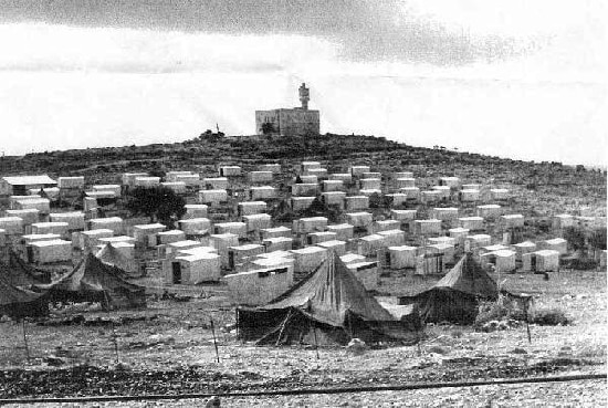 Amirim farod 1950
