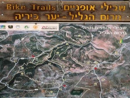 forest bike-trip