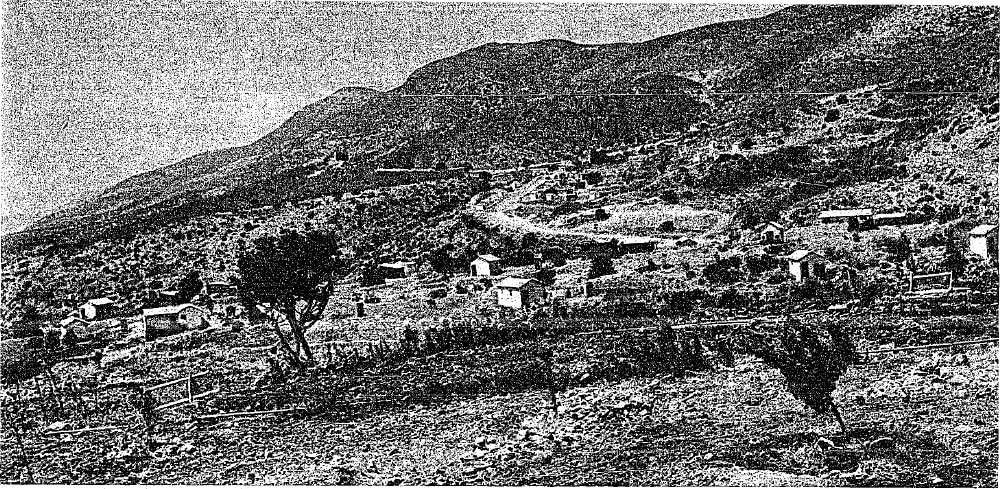 Amirm 1959